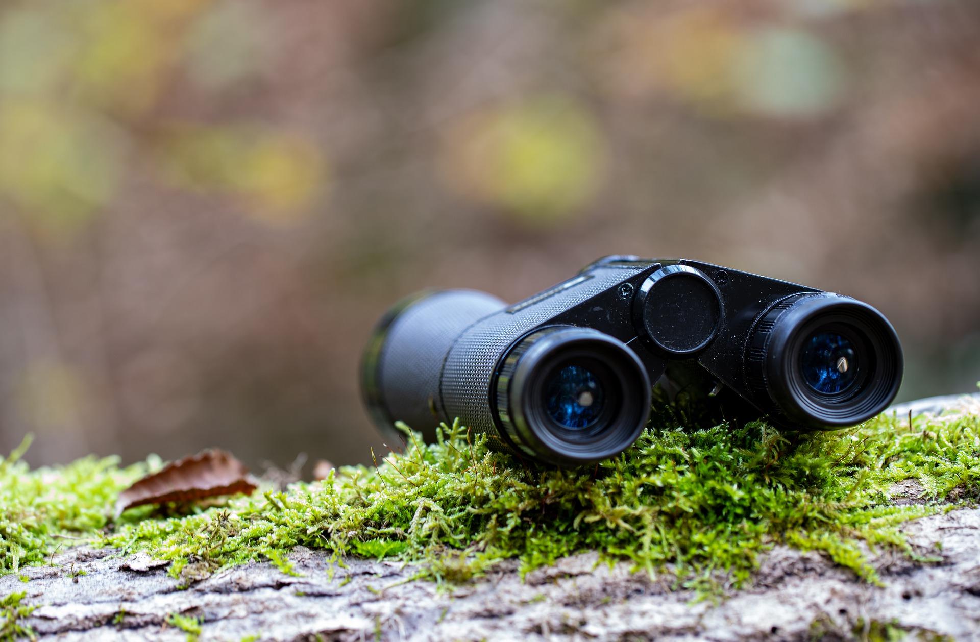 Jagd Fernglas